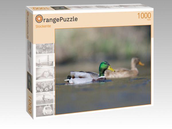 """Puzzle Motiv """"Stockente"""" - Puzzle-Schachtel zu 1000 Teile Puzzle"""
