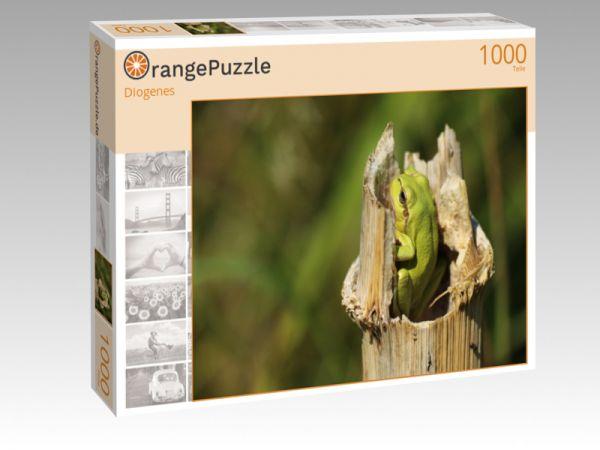 """Puzzle Motiv """"Diogenes"""" - Puzzle-Schachtel zu 1000 Teile Puzzle"""