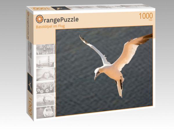 "Puzzle Motiv ""Basstölpel im Flug"" - Puzzle-Schachtel zu 1000 Teile Puzzle"