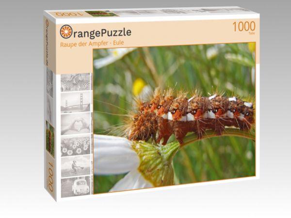 """Puzzle Motiv """"Raupe der Ampfer - Eule"""" - Puzzle-Schachtel zu 1000 Teile Puzzle"""
