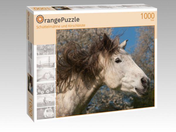 """Puzzle Motiv """"Schüttelmähne und Kirschblüte"""" - Puzzle-Schachtel zu 1000 Teile Puzzle"""