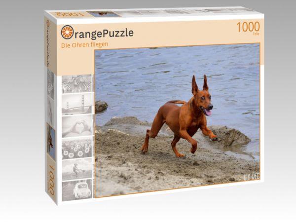 """Puzzle Motiv """"Die Ohren fliegen"""" - Puzzle-Schachtel zu 1000 Teile Puzzle"""