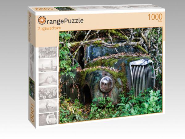 """Puzzle Motiv """"Zugewachsen"""" - Puzzle-Schachtel zu 1000 Teile Puzzle"""