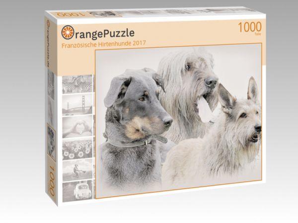 """Puzzle Motiv """"Französische Hirtenhunde 2017"""" - Puzzle-Schachtel zu 1000 Teile Puzzle"""
