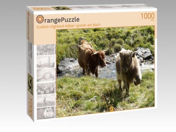 """Puzzle Motiv """"Scottish Highland Kälber spielen am Bach"""" - Puzzle-Schachtel zu 1000 Teile Puzzle"""