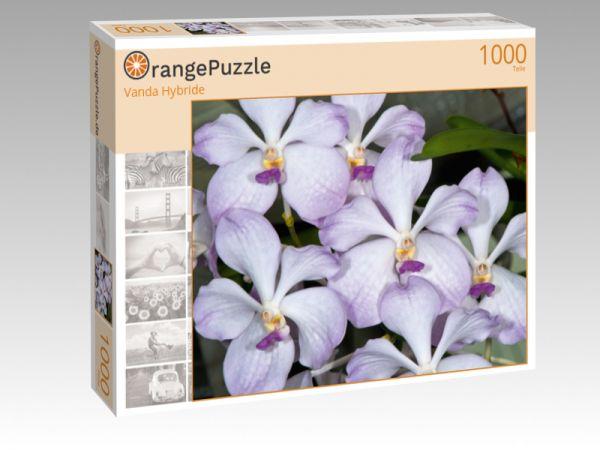 """Puzzle Motiv """"Vanda Hybride"""" - Puzzle-Schachtel zu 1000 Teile Puzzle"""