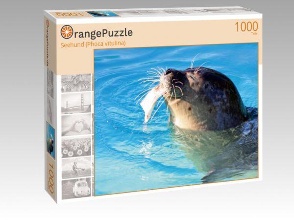 "Puzzle Motiv ""Seehund (Phoca vitulina)"" - Puzzle-Schachtel zu 1000 Teile Puzzle"