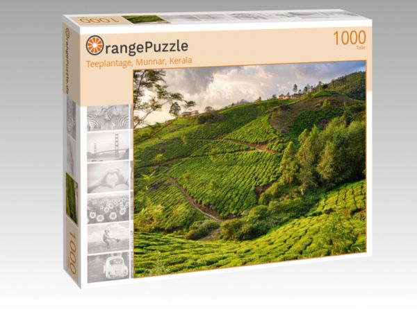"Puzzle Motiv ""Teeplantage, Munnar, Kerala"" - Puzzle-Schachtel zu 1000 Teile Puzzle"