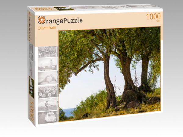 """Puzzle Motiv """"Olivenhain"""" - Puzzle-Schachtel zu 1000 Teile Puzzle"""