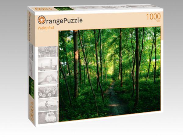 """Puzzle Motiv """"Waldpfad"""" - Puzzle-Schachtel zu 1000 Teile Puzzle"""