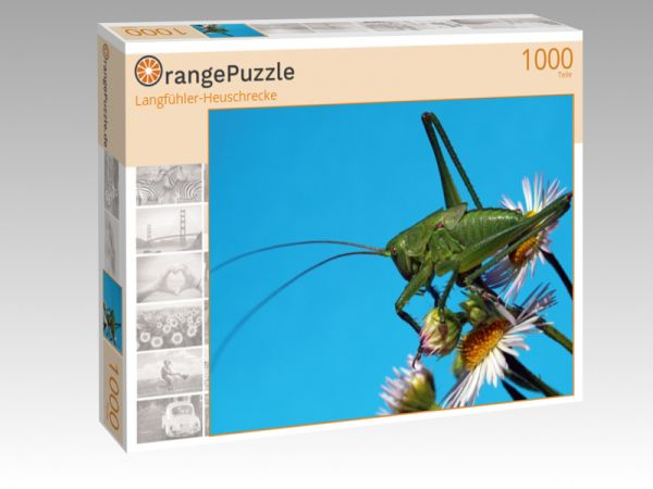 """Puzzle Motiv """"Langfühler-Heuschrecke"""" - Puzzle-Schachtel zu 1000 Teile Puzzle"""