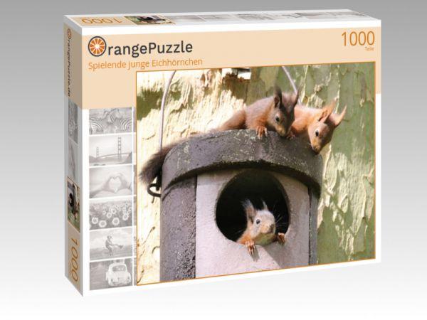 """Puzzle Motiv """"Spielende junge Eichhörnchen"""" - Puzzle-Schachtel zu 1000 Teile Puzzle"""