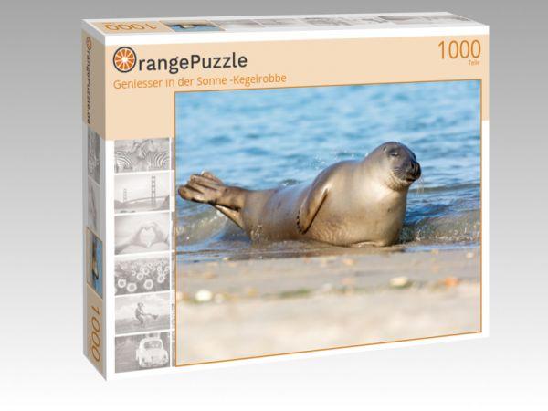 """Puzzle Motiv """"Geniesser in der Sonne -Kegelrobbe"""" - Puzzle-Schachtel zu 1000 Teile Puzzle"""