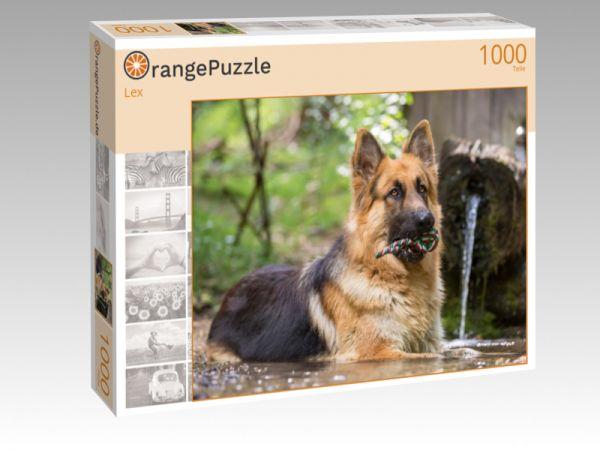 """Puzzle Motiv """"Lex"""" - Puzzle-Schachtel zu 1000 Teile Puzzle"""