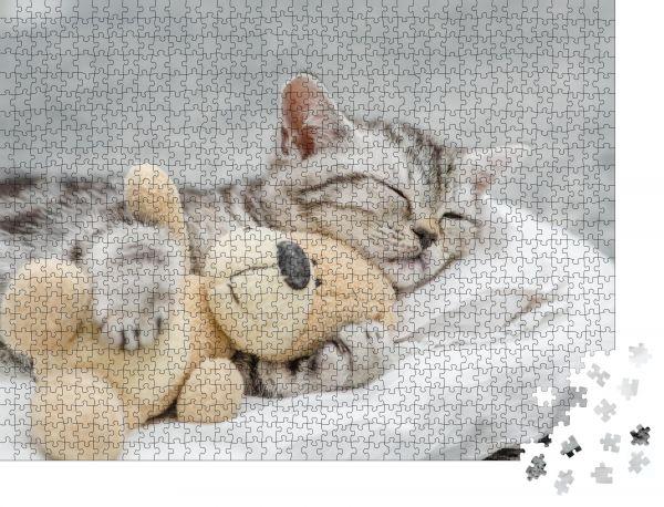 """Puzzle-Motiv """"Süßes Kätzchen schläft mit einem Spielzeugbären"""" - Puzzle-Teile zu 1000 Teile Puzzle"""