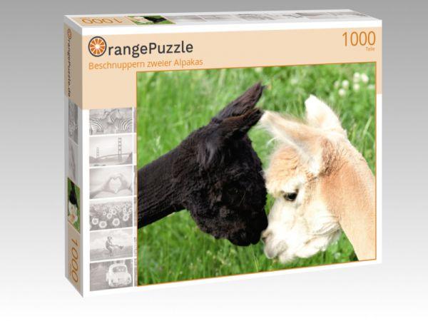 """Puzzle Motiv """"Beschnuppern zweier Alpakas"""" - Puzzle-Schachtel zu 1000 Teile Puzzle"""