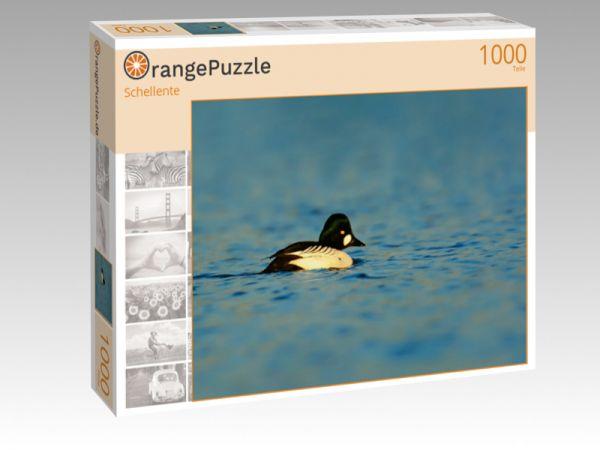 """Puzzle Motiv """"Schellente"""" - Puzzle-Schachtel zu 1000 Teile Puzzle"""