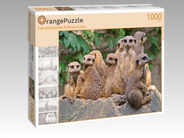 """Puzzle Motiv """"Familienbande Erdmännchen"""" - Puzzle-Schachtel zu 1000 Teile Puzzle"""