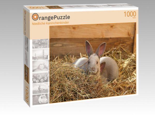 """Puzzle Motiv """"Niedliche Kaninchenkinder"""" - Puzzle-Schachtel zu 1000 Teile Puzzle"""