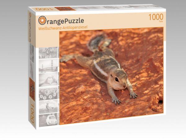 """Puzzle Motiv """"Weißschwanz-Antilopenziesel"""" - Puzzle-Schachtel zu 1000 Teile Puzzle"""