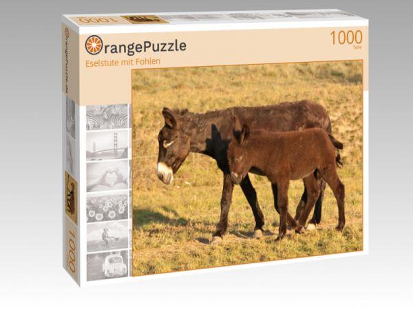 "Puzzle Motiv ""Eselstute mit Fohlen"" - Puzzle-Schachtel zu 1000 Teile Puzzle"