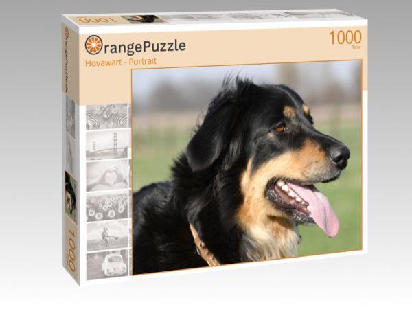 """Puzzle Motiv """"Hovawart - Portrait"""" - Puzzle-Schachtel zu 1000 Teile Puzzle"""