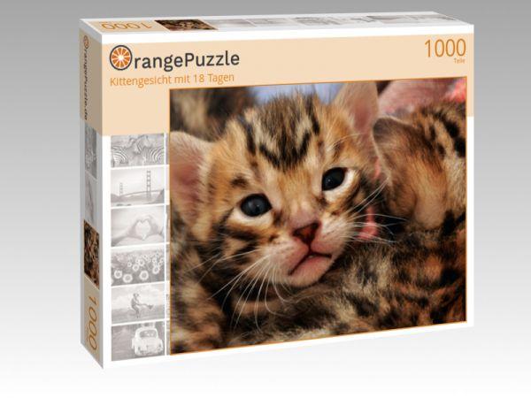 """Puzzle Motiv """"Kittengesicht mit 18 Tagen"""" - Puzzle-Schachtel zu 1000 Teile Puzzle"""