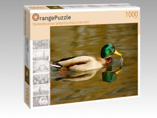 """Puzzle Motiv """"Stockente (Anas platyrhynchos) männlich"""" - Puzzle-Schachtel zu 1000 Teile Puzzle"""