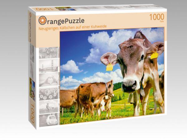"""Puzzle Motiv """"Neugieriges Kälbchen auf einer Kuhweide"""" - Puzzle-Schachtel zu 1000 Teile Puzzle"""
