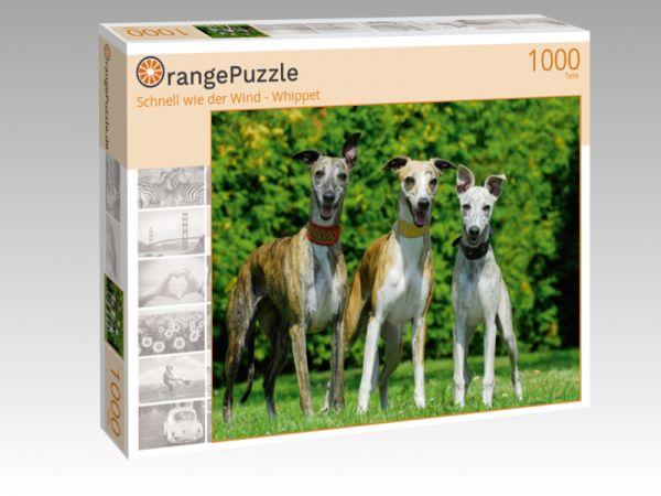 """Puzzle Motiv """"Schnell wie der Wind - Whippet"""" - Puzzle-Schachtel zu 1000 Teile Puzzle"""
