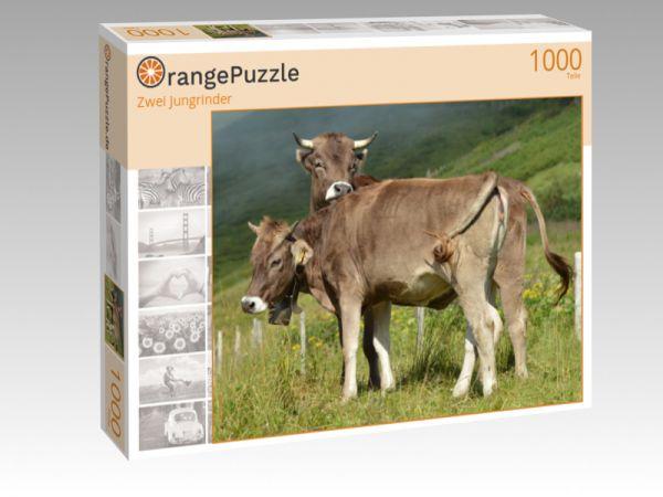 """Puzzle Motiv """"Zwei Jungrinder"""" - Puzzle-Schachtel zu 1000 Teile Puzzle"""