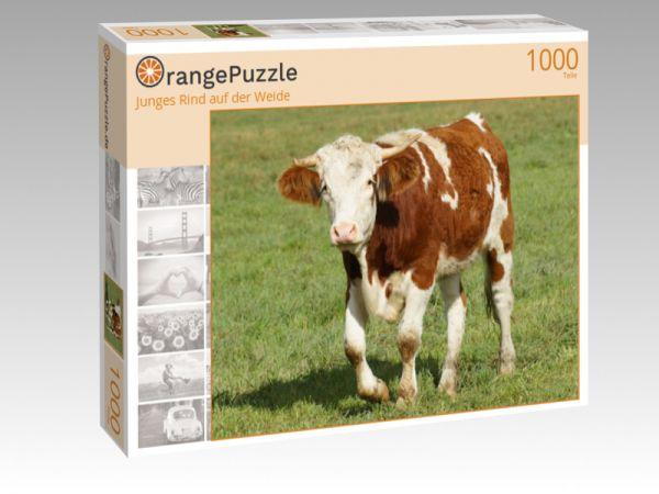 """Puzzle Motiv """"Junges Rind auf der Weide"""" - Puzzle-Schachtel zu 1000 Teile Puzzle"""