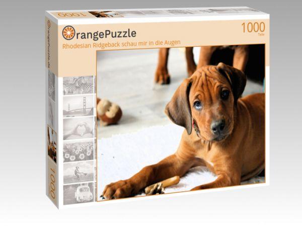 """Puzzle Motiv """"Rhodesian Ridgeback schau mir in die Augen"""" - Puzzle-Schachtel zu 1000 Teile Puzzle"""