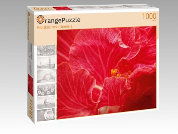 """Puzzle Motiv """"Hibiskus rosa sinensis"""" - Puzzle-Schachtel zu 1000 Teile Puzzle"""