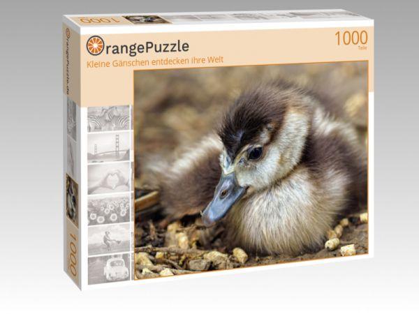 """Puzzle Motiv """"Kleine Gänschen entdecken ihre Welt"""" - Puzzle-Schachtel zu 1000 Teile Puzzle"""
