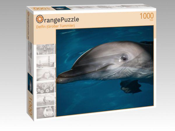 """Puzzle Motiv """"Delfin (Großer Tümmler)"""" - Puzzle-Schachtel zu 1000 Teile Puzzle"""
