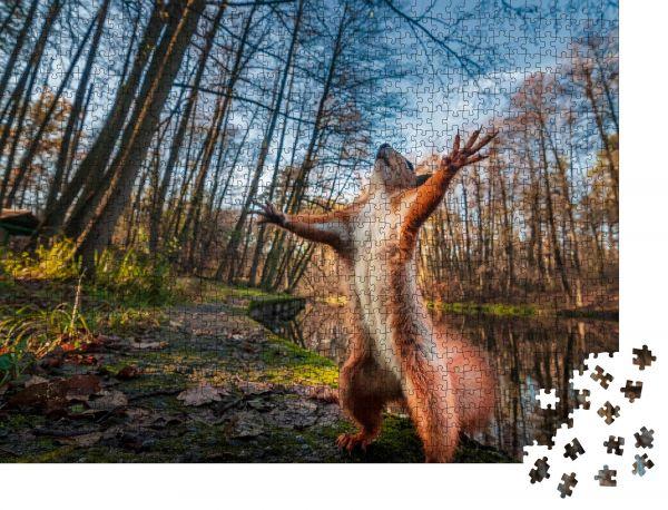 "Puzzle-Motiv ""Lustiges rotes Eichhörnchen, das wie Master of the Universe im Wald steht. Comic-Tier"" - Puzzle-Teile zu 1000 Teile Puzzle"