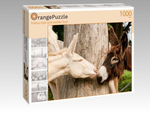 """Puzzle Motiv """"Poitou Esel und weißer Esel"""" - Puzzle-Schachtel zu 1000 Teile Puzzle"""