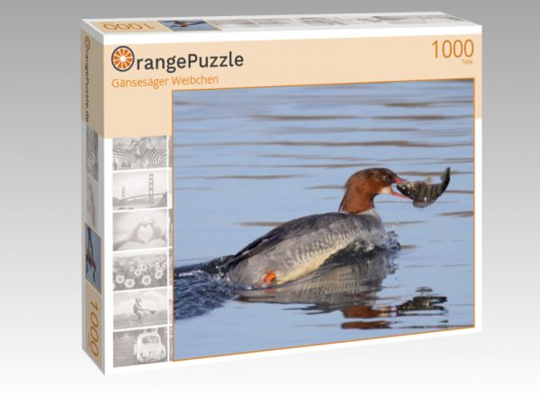 """Puzzle Motiv """"Gänsesäger Weibchen"""" - Puzzle-Schachtel zu 1000 Teile Puzzle"""