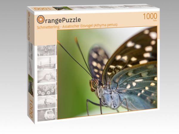 """Puzzle Motiv """"Schmetterling - Asiatischer Eisvogel (Athyma perius)"""" - Puzzle-Schachtel zu 1000 Teile Puzzle"""