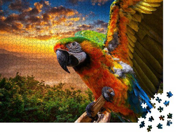 """Puzzle-Motiv """"Papagei Vogel Hintergrund"""" - Puzzle-Schachtel zu 1000 Teile Puzzle"""