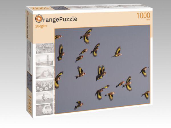 "Puzzle Motiv ""Stieglitz"" - Puzzle-Schachtel zu 1000 Teile Puzzle"