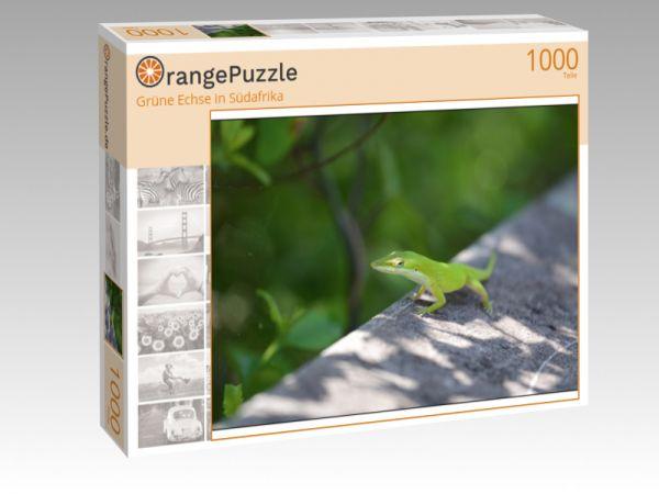 """Puzzle Motiv """"Grüne Echse in Südafrika"""" - Puzzle-Schachtel zu 1000 Teile Puzzle"""