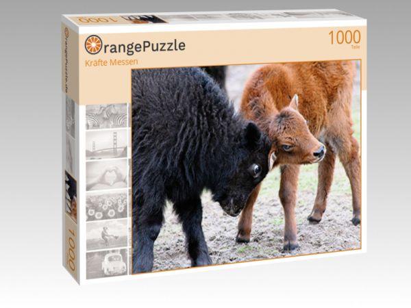 """Puzzle Motiv """"Kräfte Messen"""" - Puzzle-Schachtel zu 1000 Teile Puzzle"""