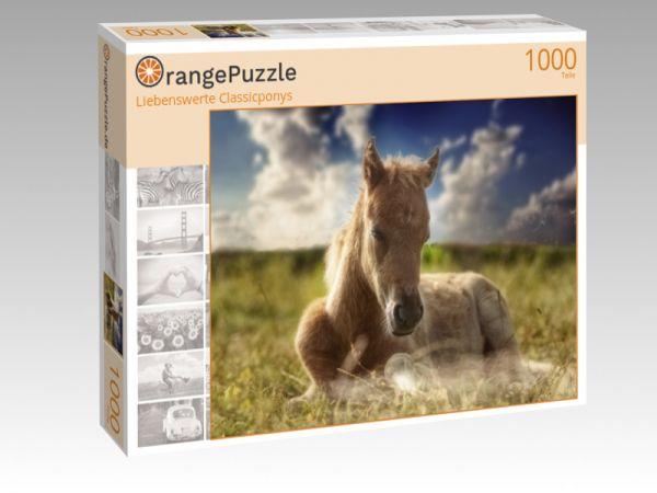"Puzzle Motiv ""Liebenswerte Classicponys"" - Puzzle-Schachtel zu 1000 Teile Puzzle"