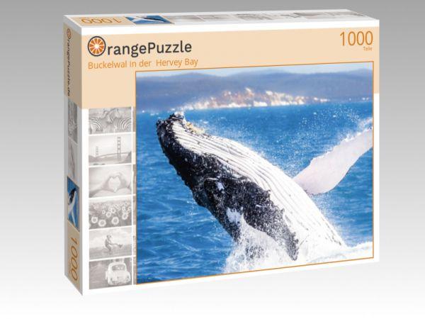 """Puzzle Motiv """"Buckelwal in der  Hervey Bay"""" - Puzzle-Schachtel zu 1000 Teile Puzzle"""