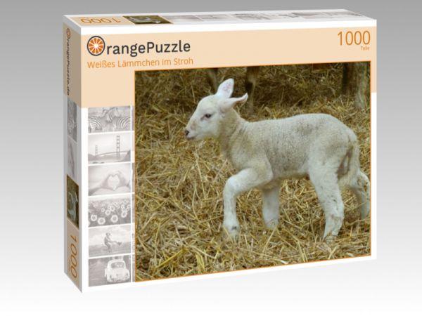"""Puzzle Motiv """"Weißes Lämmchen im Stroh"""" - Puzzle-Schachtel zu 1000 Teile Puzzle"""