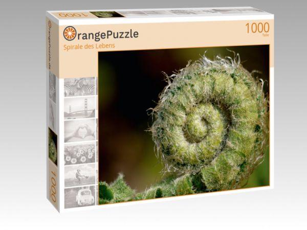 """Puzzle Motiv """"Spirale des Lebens"""" - Puzzle-Schachtel zu 1000 Teile Puzzle"""