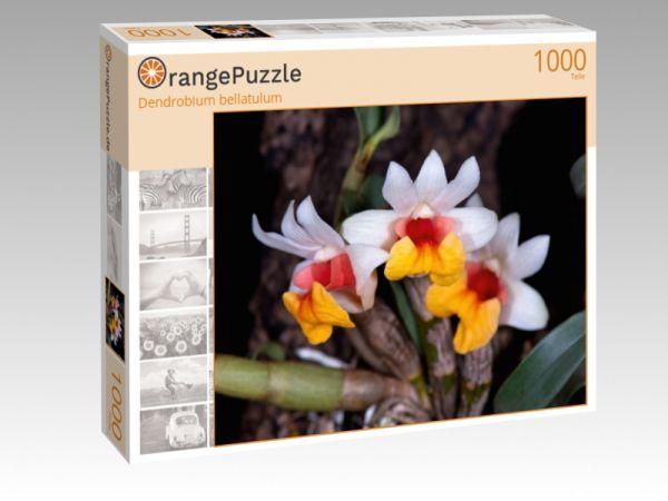 "Puzzle Motiv ""Dendrobium bellatulum"" - Puzzle-Schachtel zu 1000 Teile Puzzle"