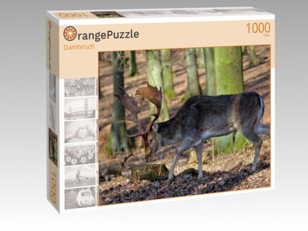 """Puzzle Motiv """"Damhirsch"""" - Puzzle-Schachtel zu 1000 Teile Puzzle"""